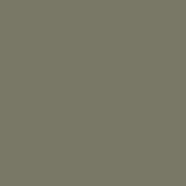 s5005_g80y